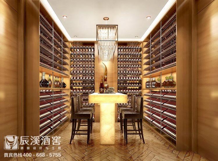 别墅酒窖设计与工程案例-储酒区现代风格